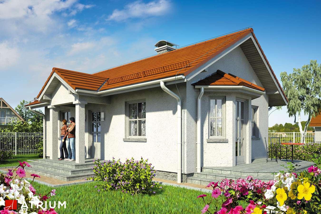 Projekty domów - Projekt domu parterowego TANGO - wizualizacja 1 - wersja lustrzana
