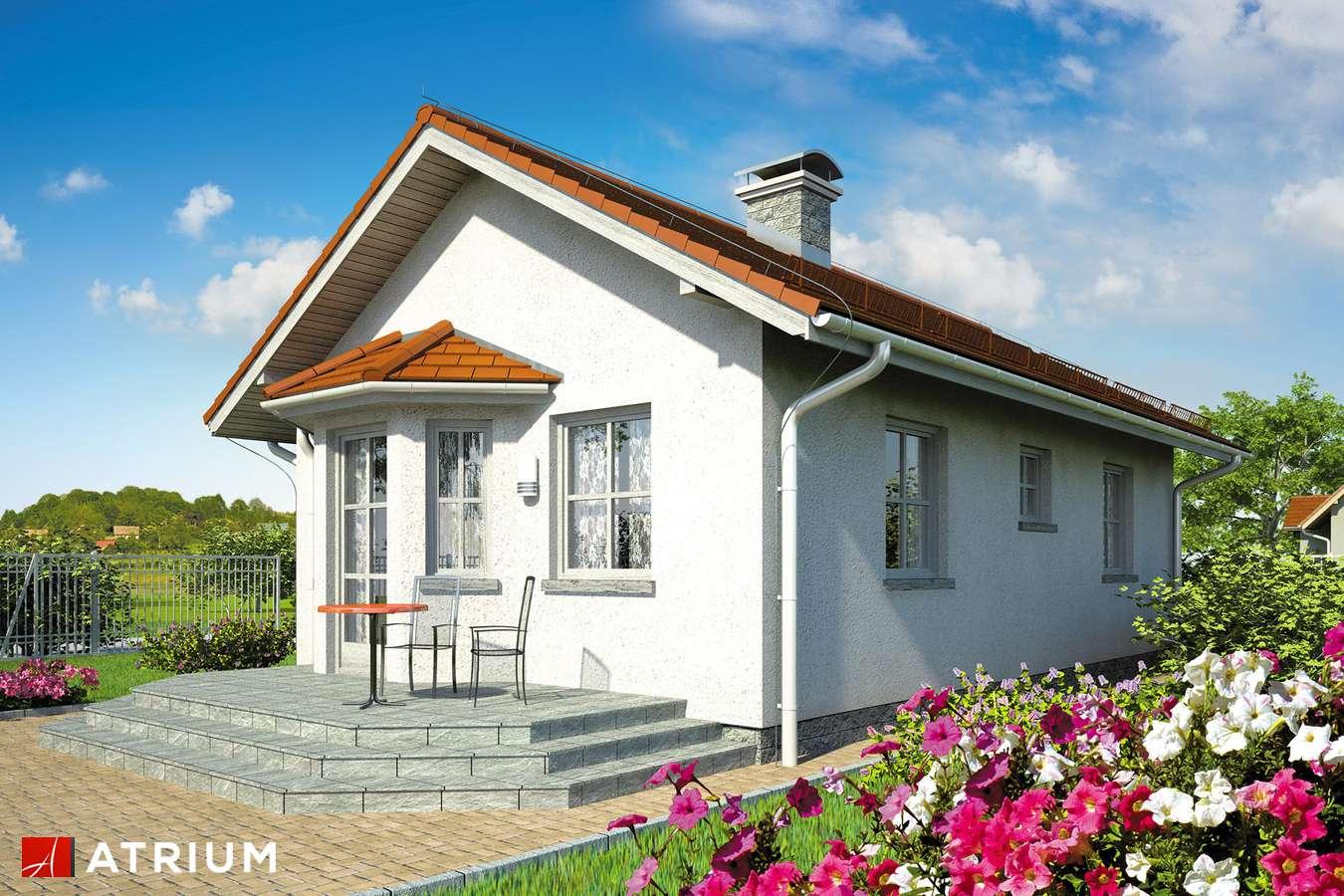 Projekty domów - Projekt domu parterowego TANGO - wizualizacja 2 - wersja lustrzana