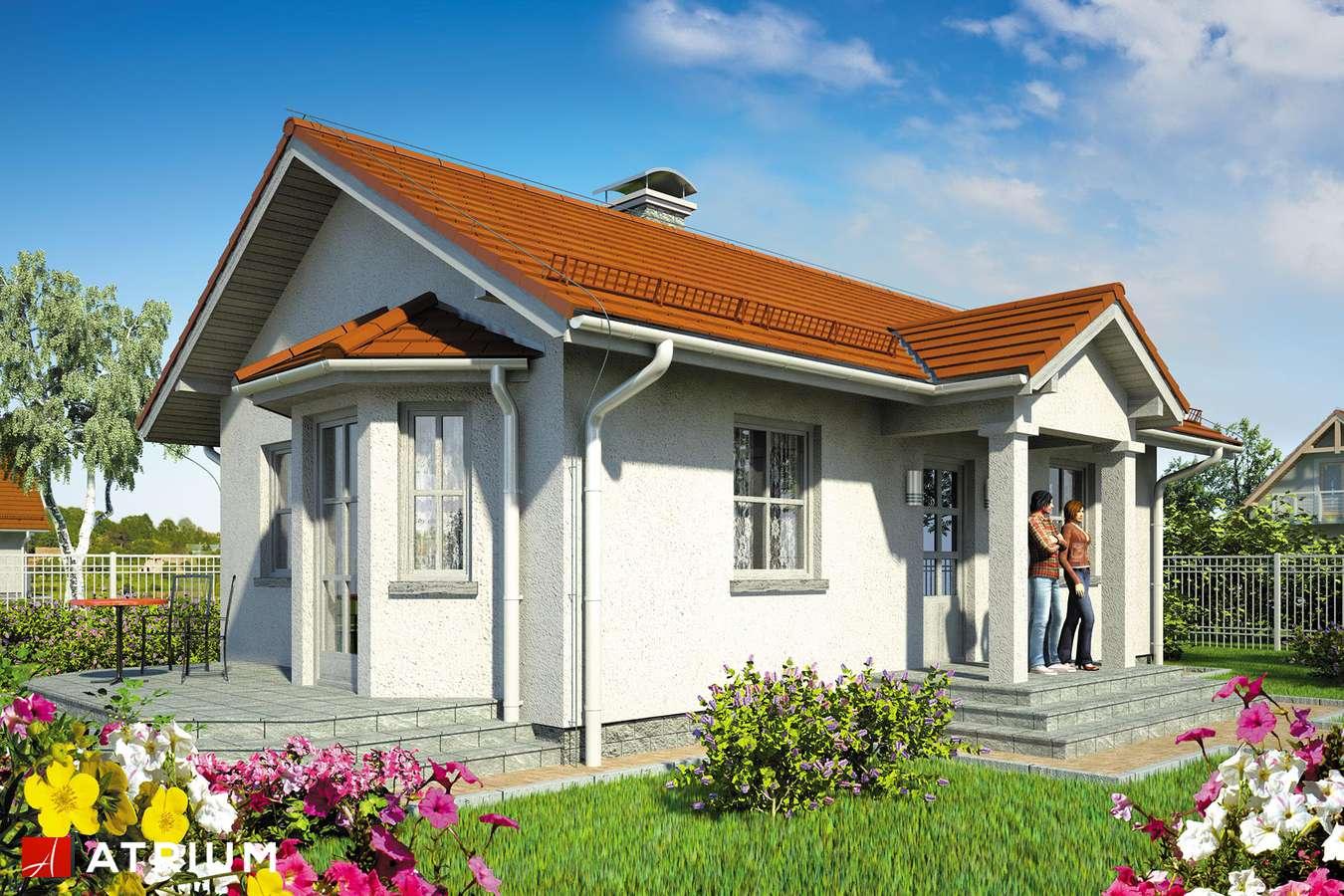 Projekty domów - Projekt domu parterowego TANGO - wizualizacja 1