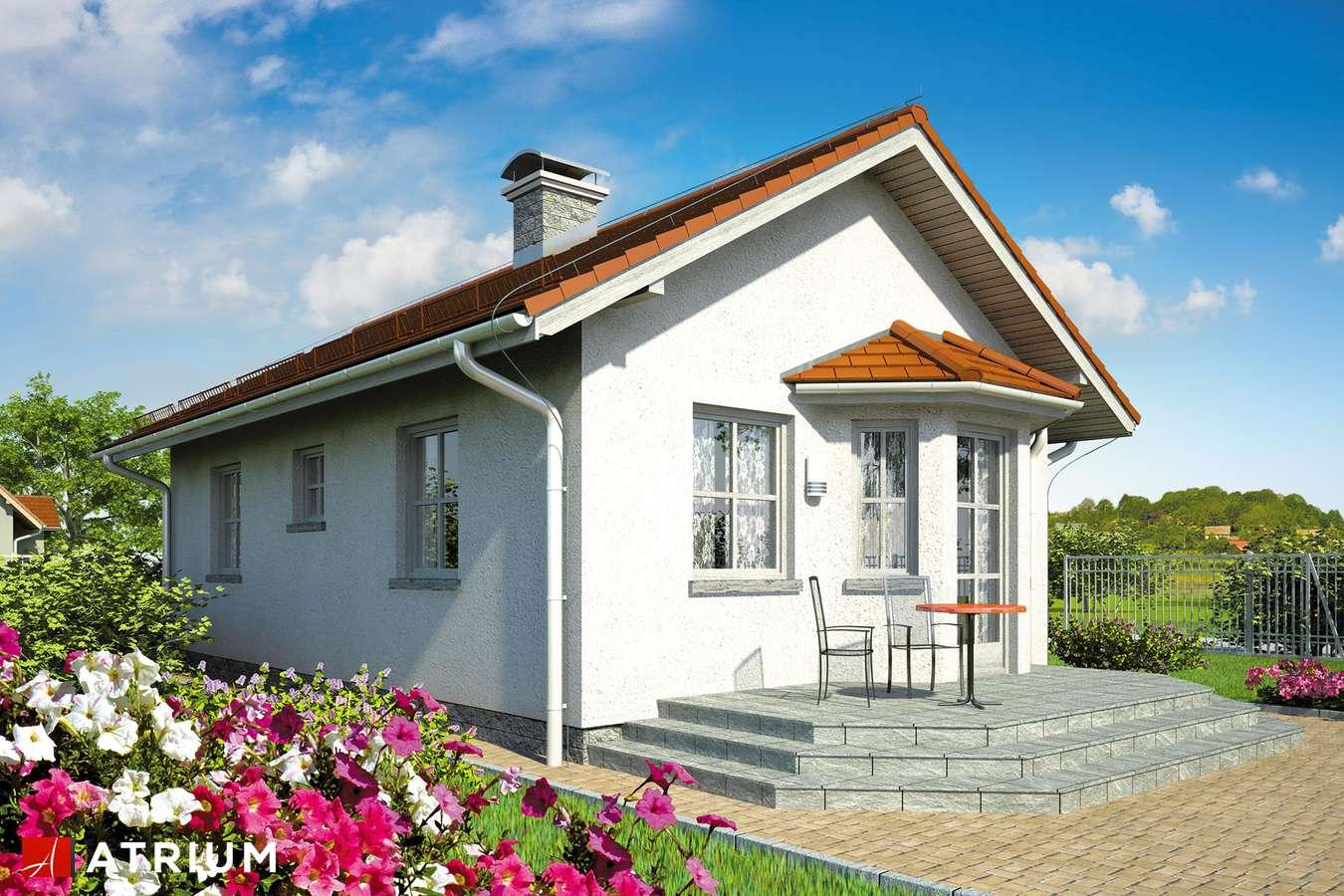 Projekty domów - Projekt domu parterowego TANGO - wizualizacja 2