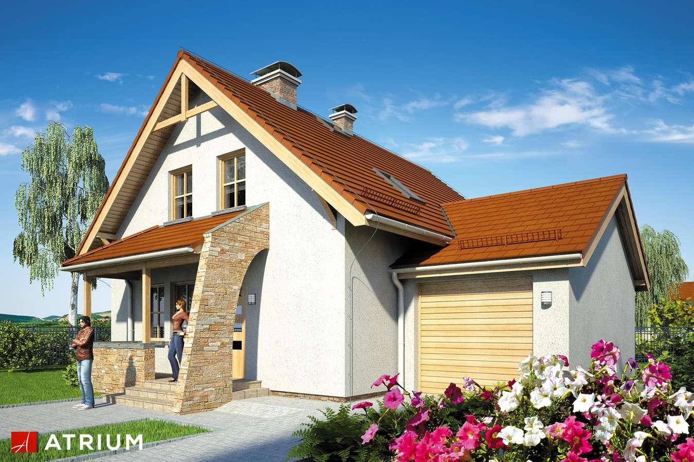 Projekty domów - Projekt domu z poddaszem MAKS - wizualizacja 1