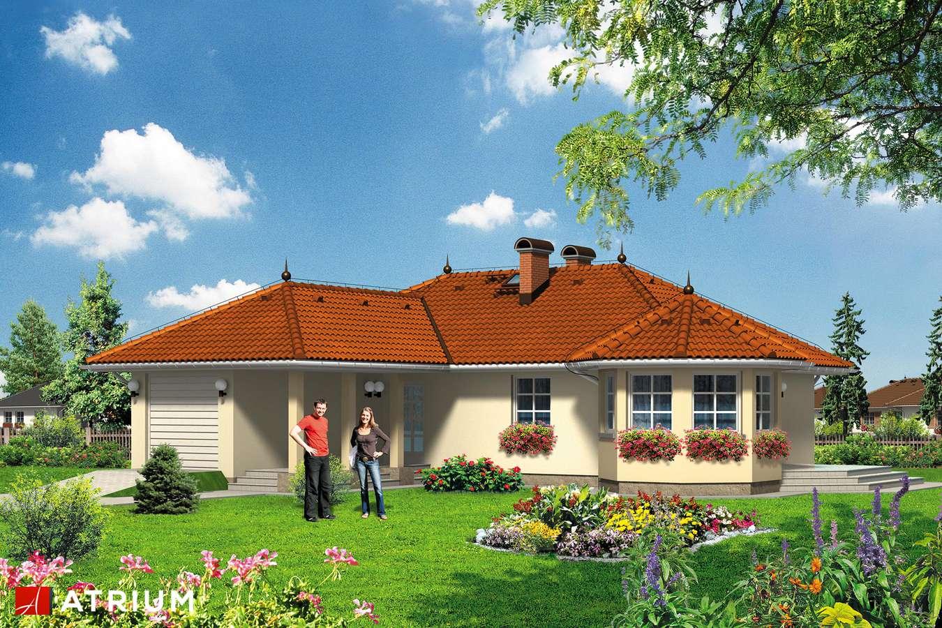 Projekty domów - Projekt domu parterowego PEGAZ - wizualizacja 1