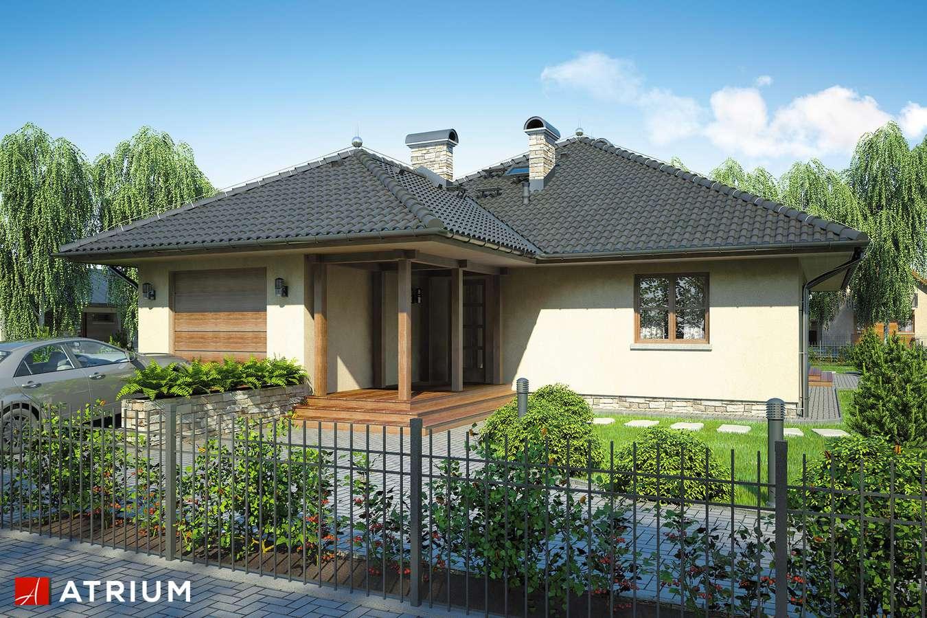 Projekty domów - Projekt domu parterowego OSTOJA - wizualizacja 1