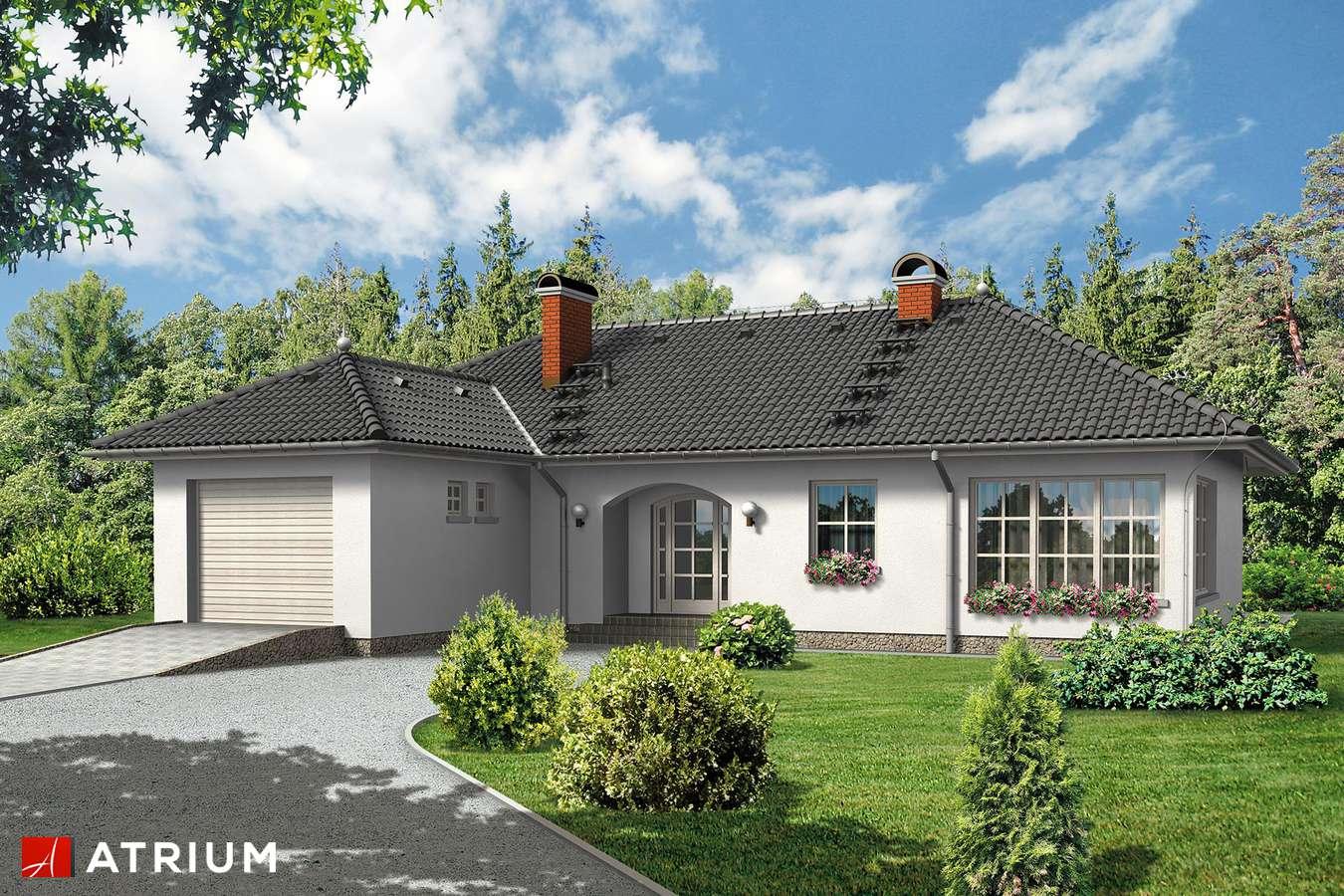 Projekt domu parterowego KALINA - wizualizacja 1