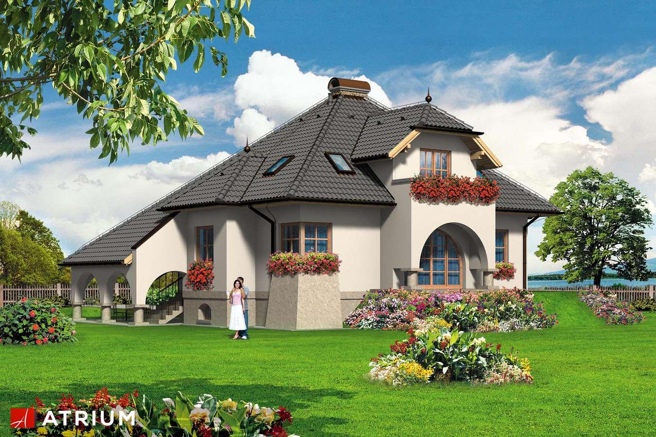 Projekty domów - Projekt domu z poddaszem DIAMENT - wizualizacja 1