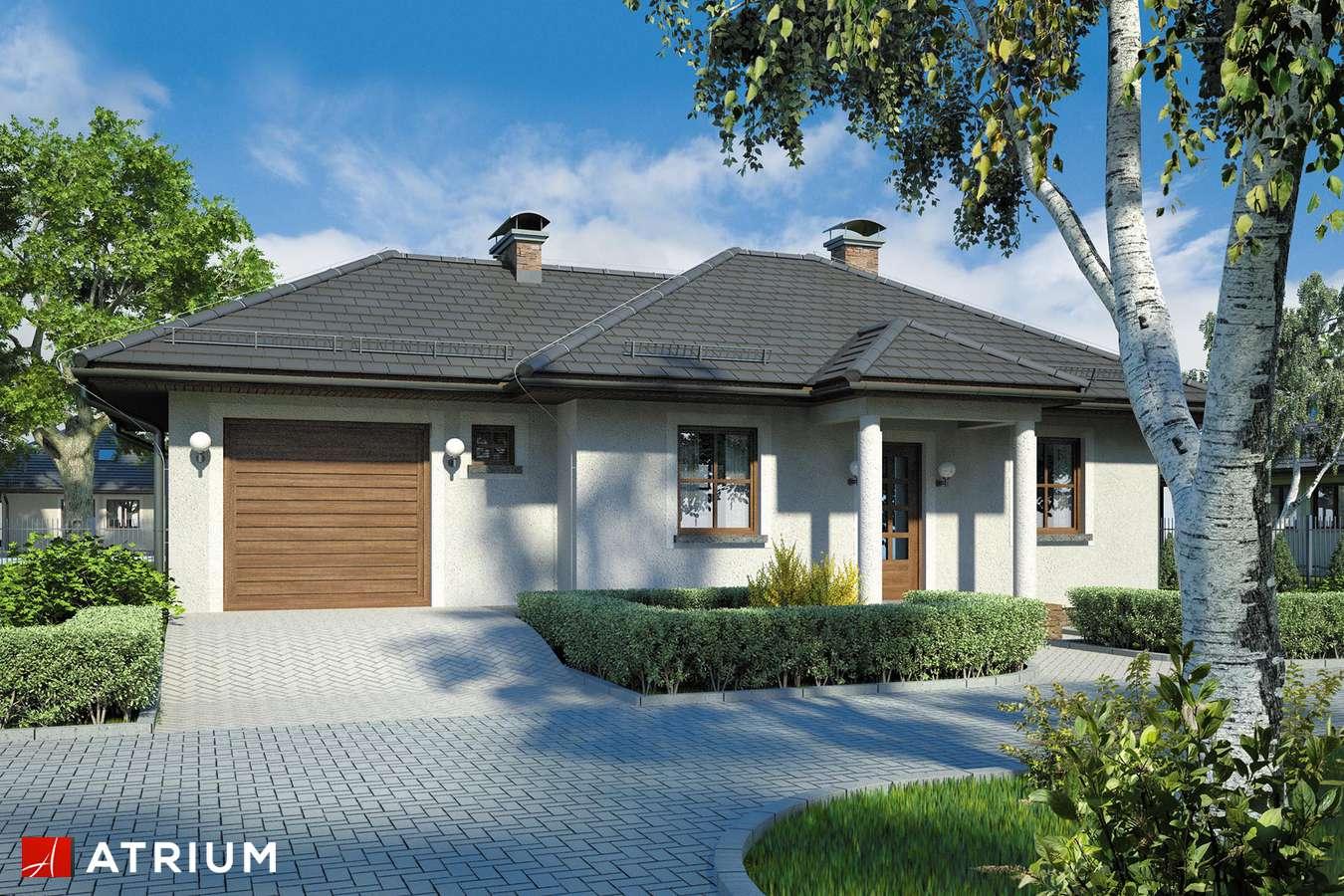 Projekt domu parterowego ZORBA - wizualizacja 1