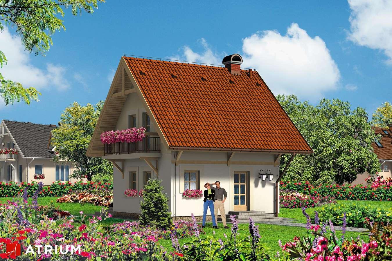 Projekty domów - Projekt domu z poddaszem BłAWATEK - wizualizacja 2