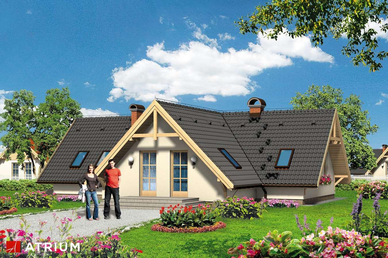 Projekt domu parterowego WIGWAM - wizualizacja 1