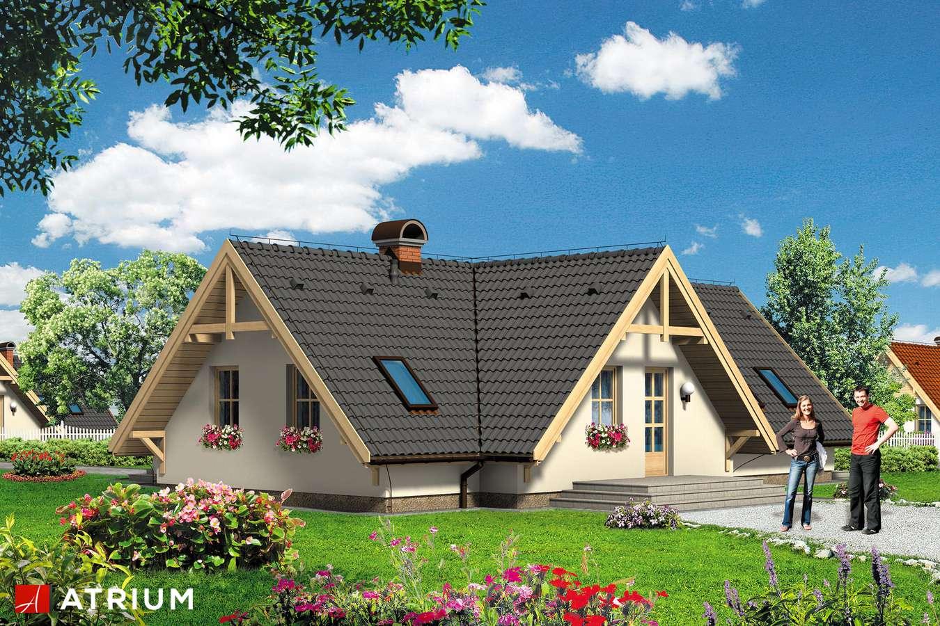 Projekt domu parterowego WIGWAM - wizualizacja 2