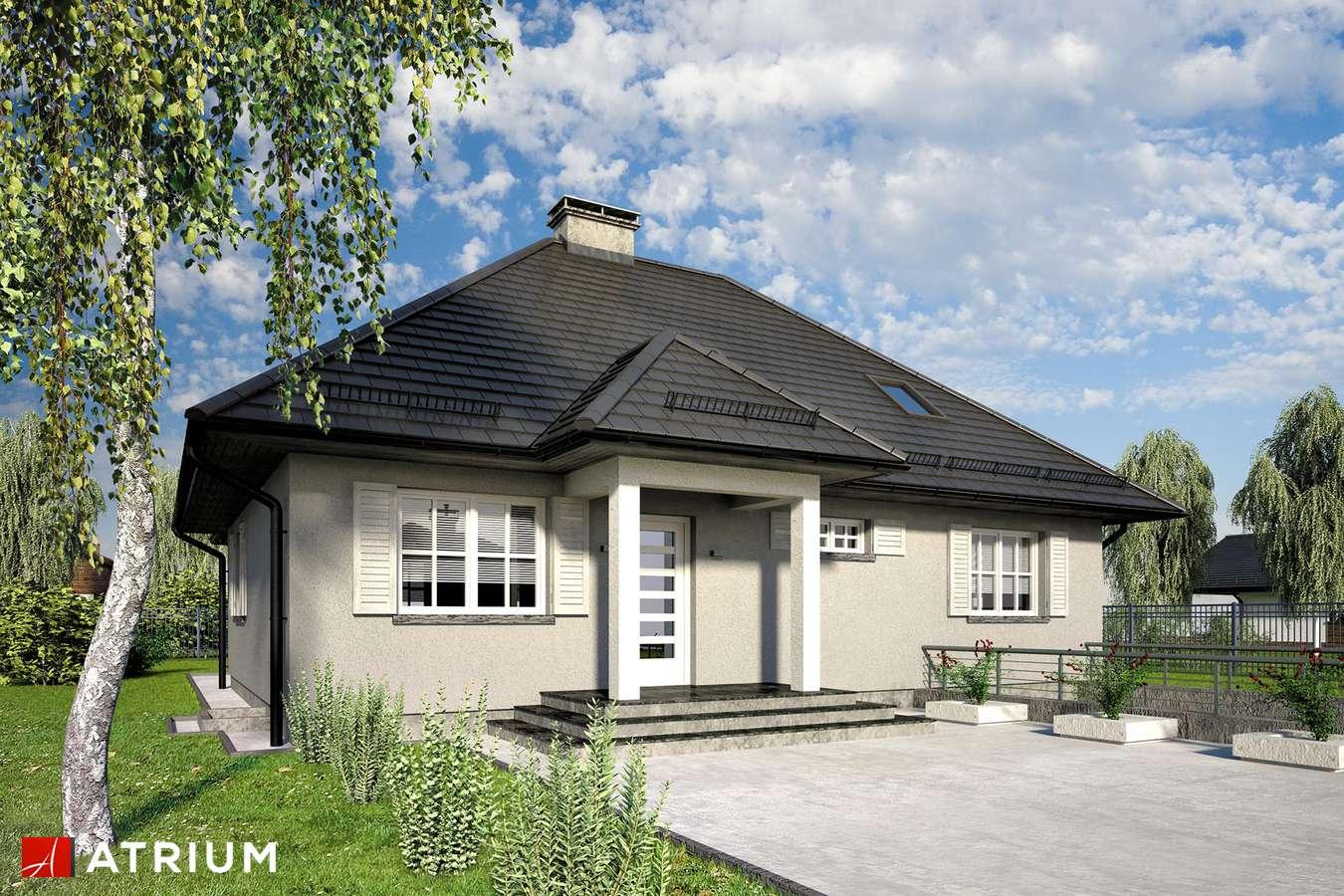 Projekt domu z poddaszem NASZ AZYL - wizualizacja 1