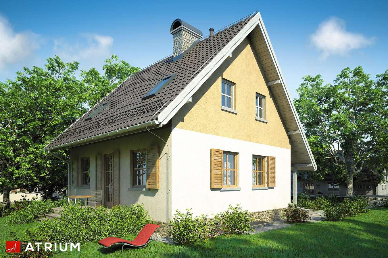 Projekty domów - Projekt domu z poddaszem MIKOłAJEK - wizualizacja 2