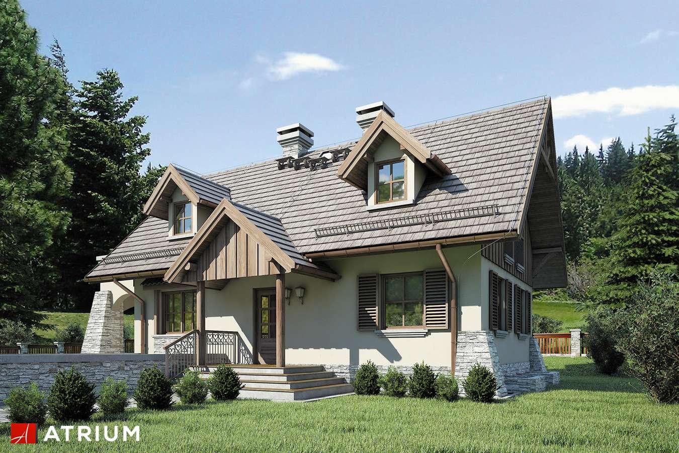 Projekty domów - Projekt domu z poddaszem HARNAś - wizualizacja 1