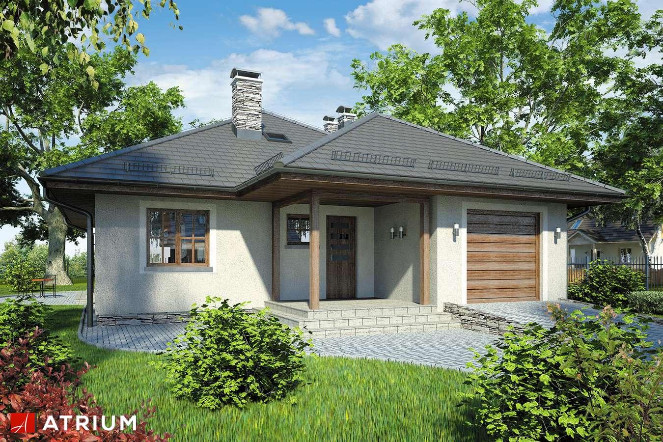 Projekty domów - Projekt domu parterowego BURSZTYN - wizualizacja 1
