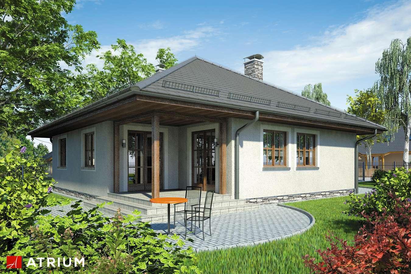 Projekty domów - Projekt domu parterowego BURSZTYN - wizualizacja 2