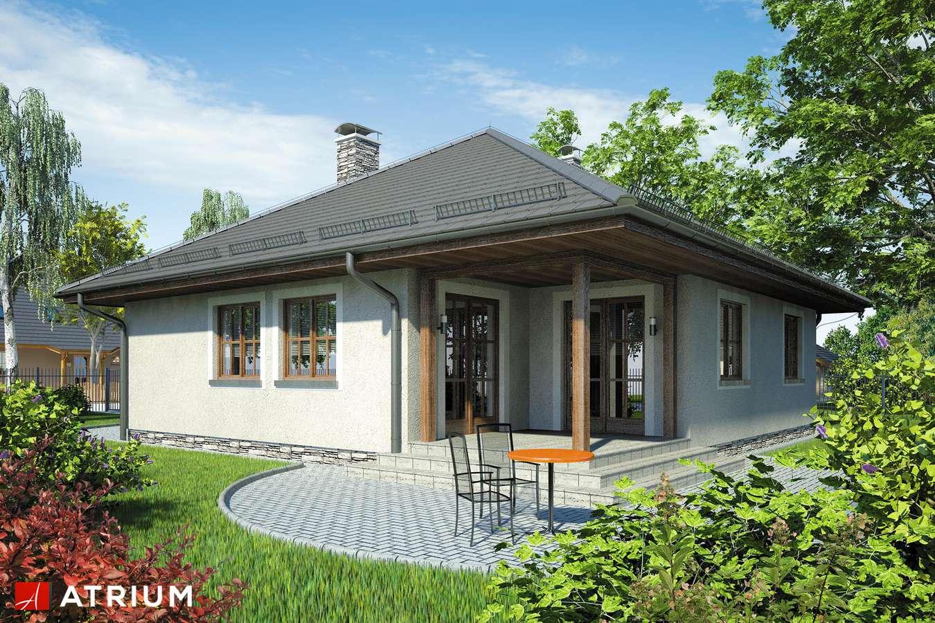 Projekty domów - Projekt domu parterowego BURSZTYN - wizualizacja 2 - wersja lustrzana