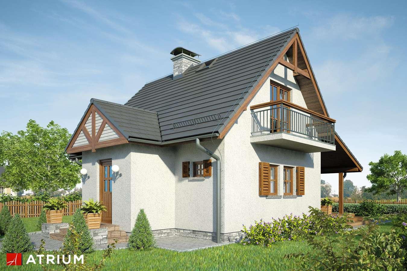 Projekty domów - Projekt domu z poddaszem LILIA II - wizualizacja 1