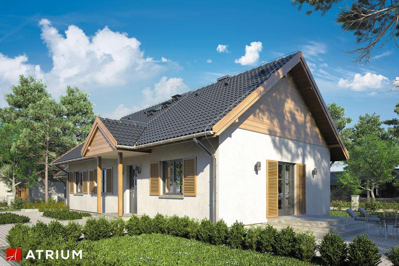 Projekty domów - Projekt domu parterowego JAGIENKA - wizualizacja 1