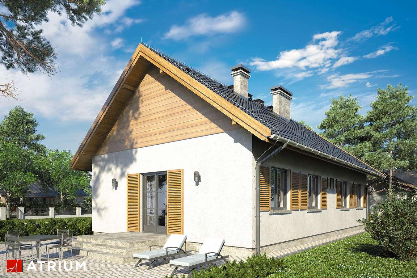 Projekty domów - Projekt domu parterowego JAGIENKA - wizualizacja 2