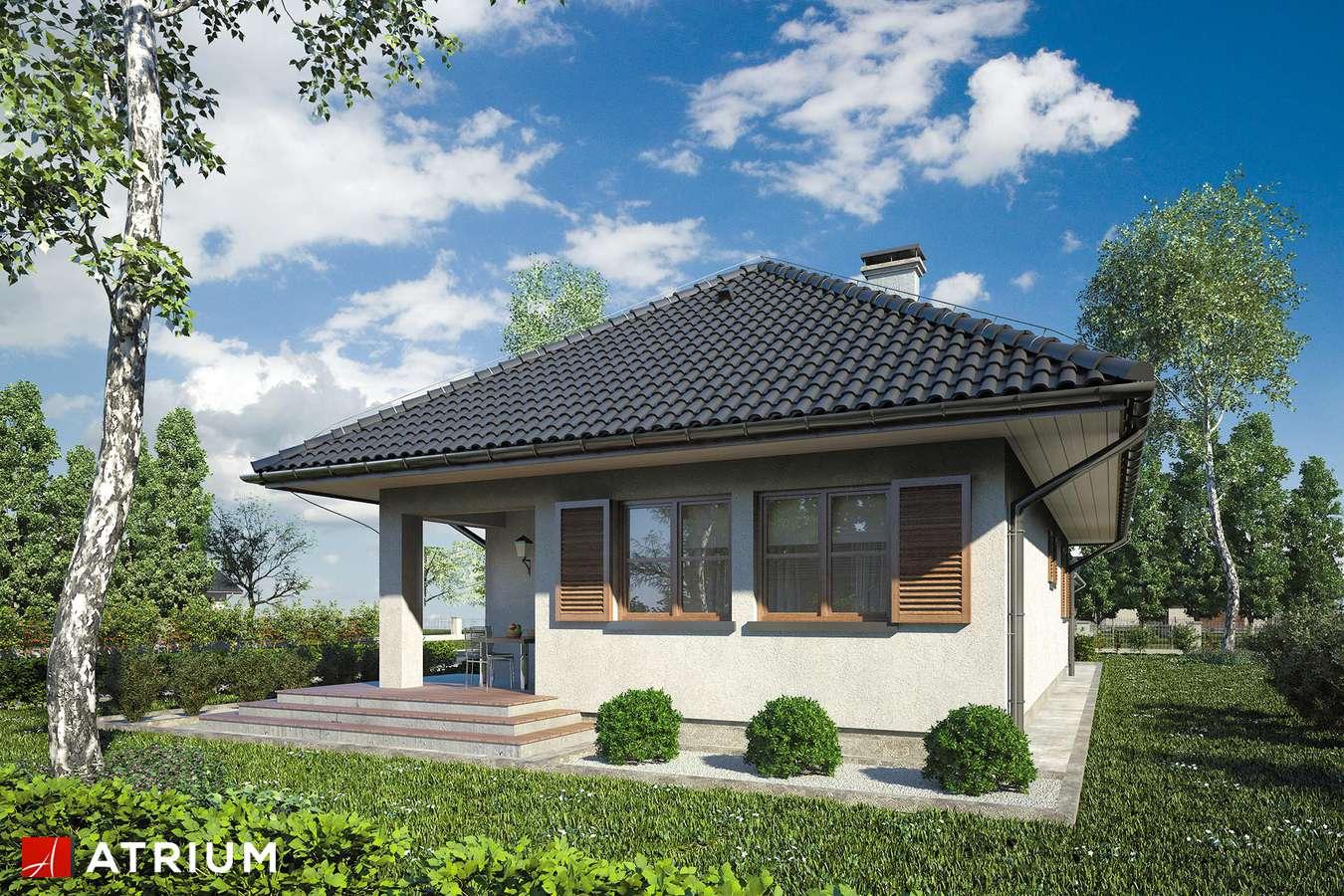 Projekty domów - Projekt domu parterowego ZBYSZKO - wizualizacja 2