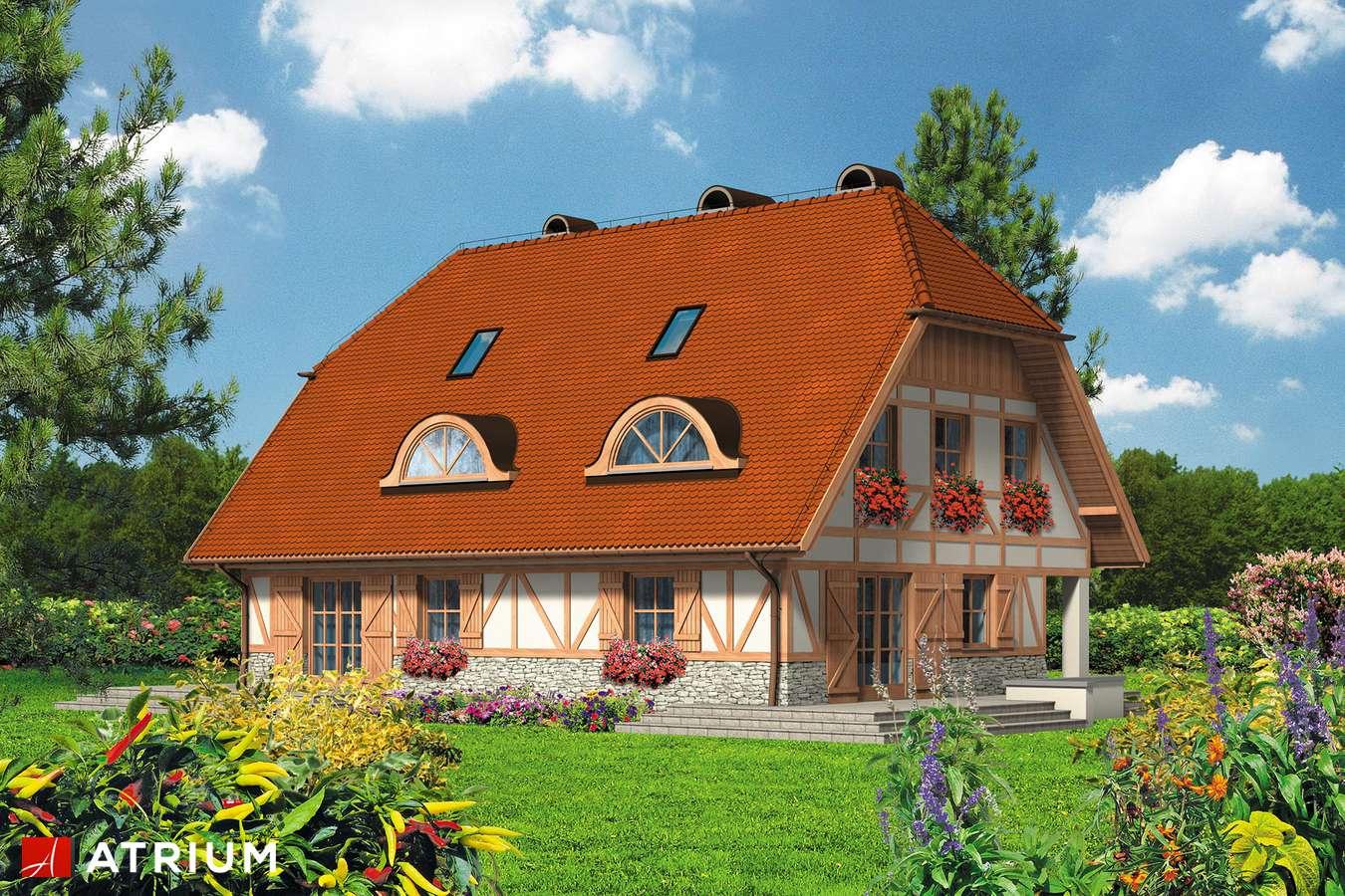 Projekty domów - Projekt domu z poddaszem DWA MICHAłY - wizualizacja 2