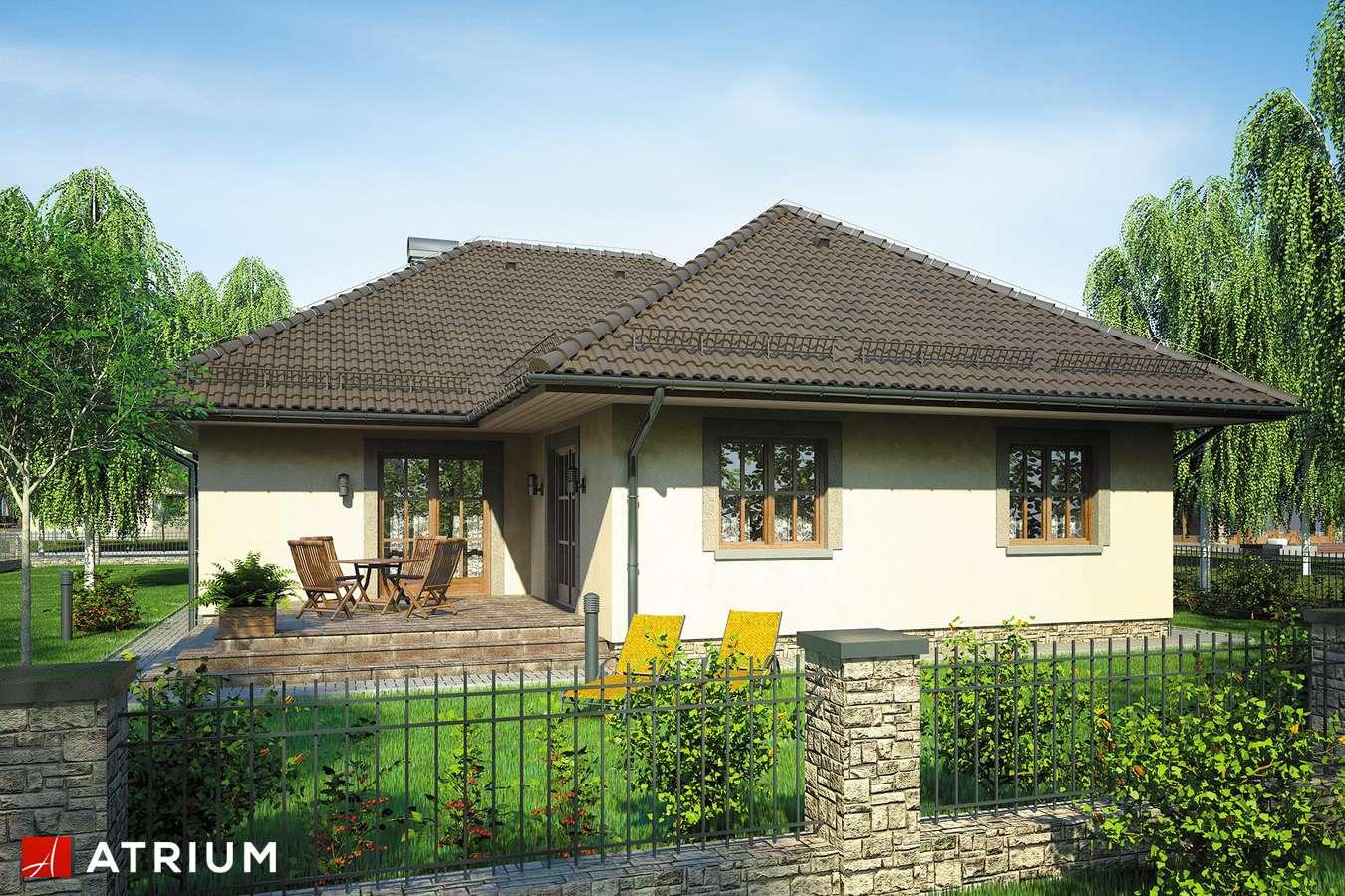 Projekty domów - Projekt domu parterowego HACJENDA - wizualizacja 2
