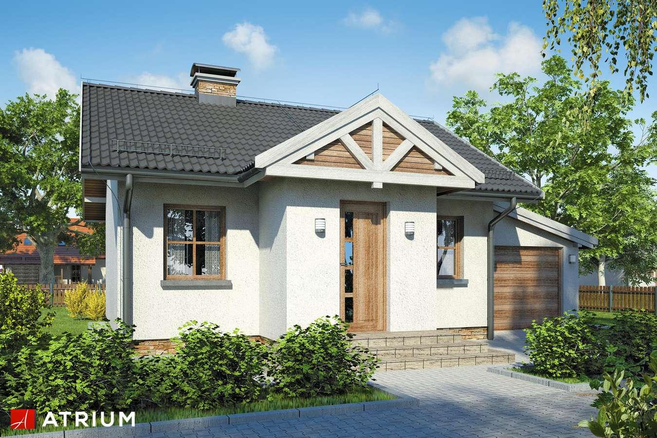 Projekty domów - Projekt domu parterowego GNIAZDKO - wizualizacja 1