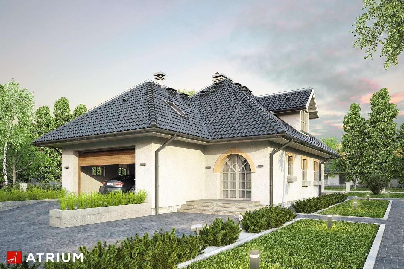 Projekty domów - Projekt domu z poddaszem ŻURAW - wizualizacja 1