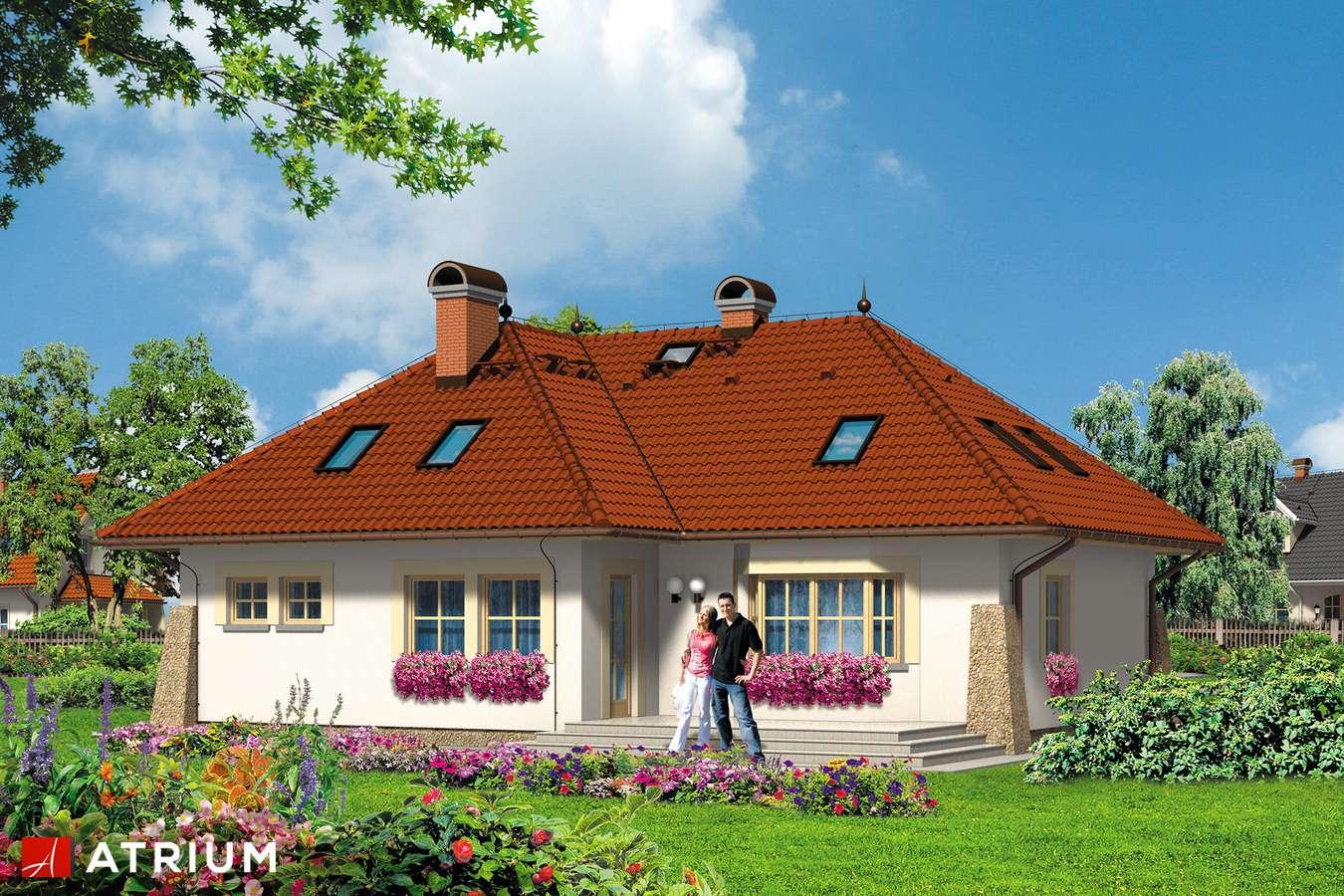 Projekty domów - Projekt domu z poddaszem DżOKER - wizualizacja 2