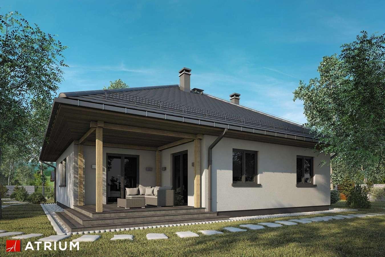 Projekty domów - Projekt domu parterowego OSTOJA PLUS - wizualizacja 2