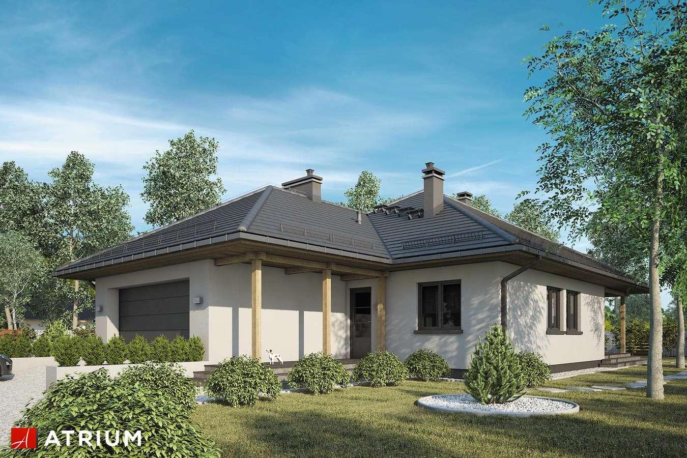 Projekty domów - Projekt domu parterowego OSTOJA PLUS - wizualizacja 1