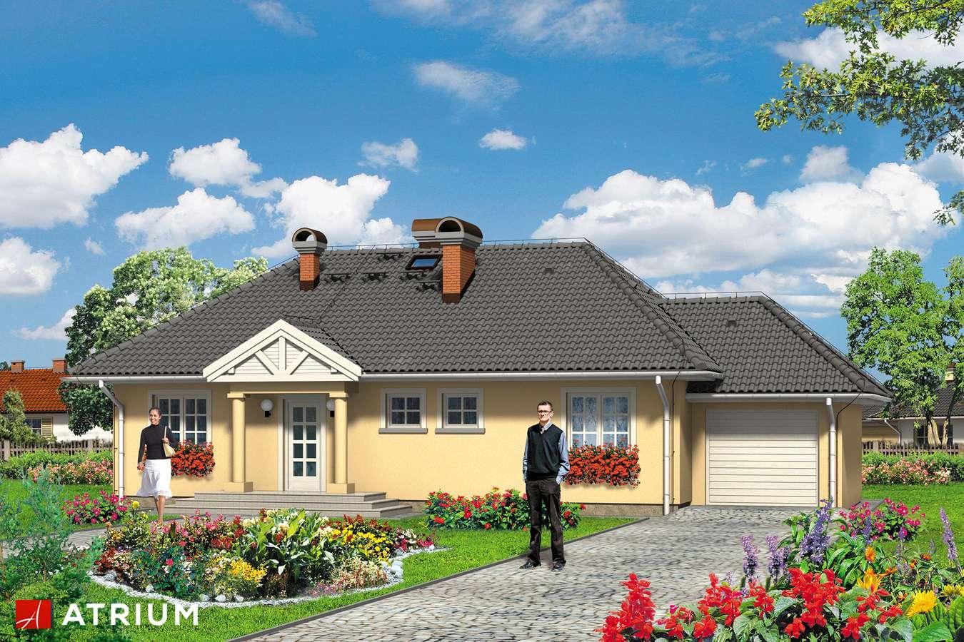 Projekty domów - Projekt domu parterowego ARKA PLUS - wizualizacja 1