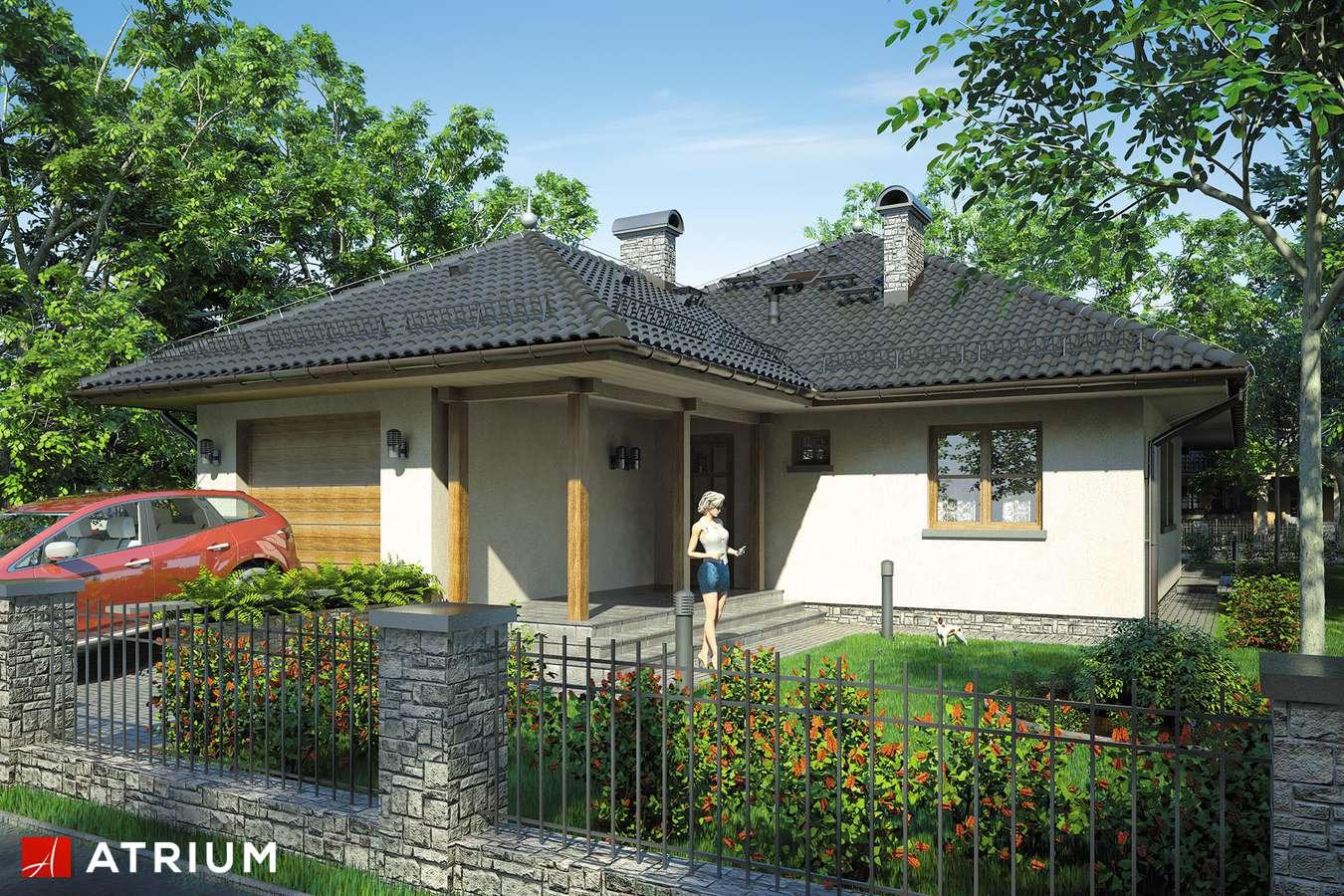 Projekty domów - Projekt domu parterowego TIP TOP - wizualizacja 1