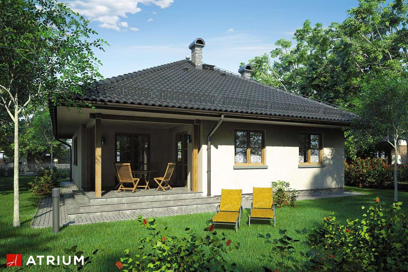 Projekty domów - Projekt domu parterowego TIP TOP - wizualizacja 2