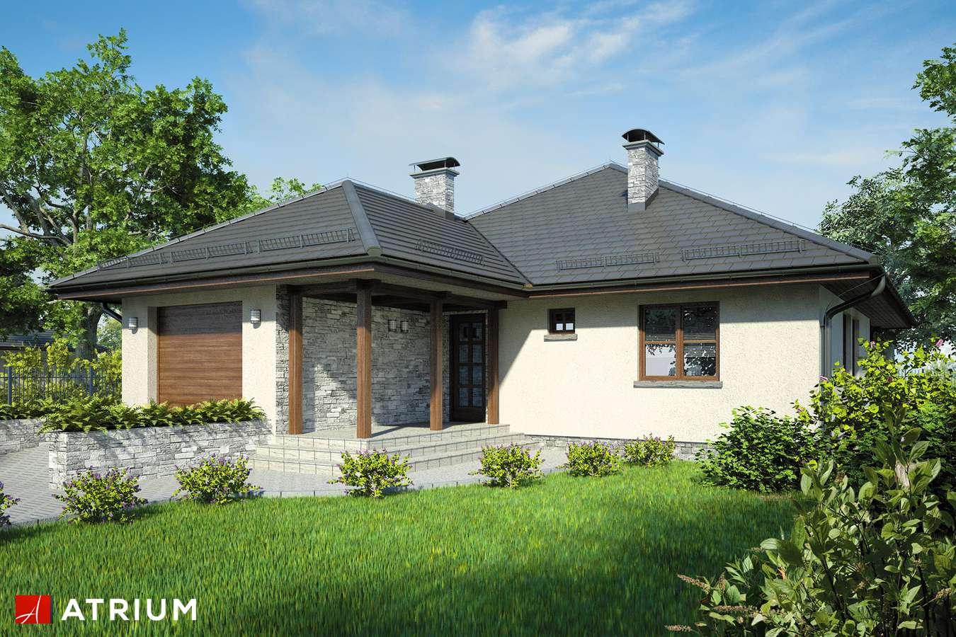 Projekty domów - Projekt domu z poddaszem FAKTOR PLUS - wizualizacja 1