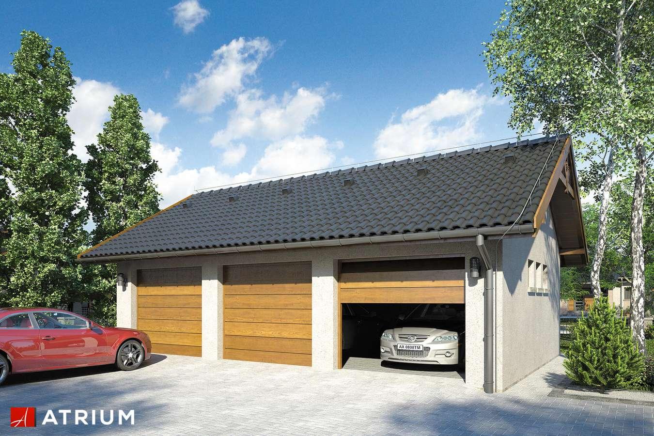 Garaż Z 21 - wizualizacja 1
