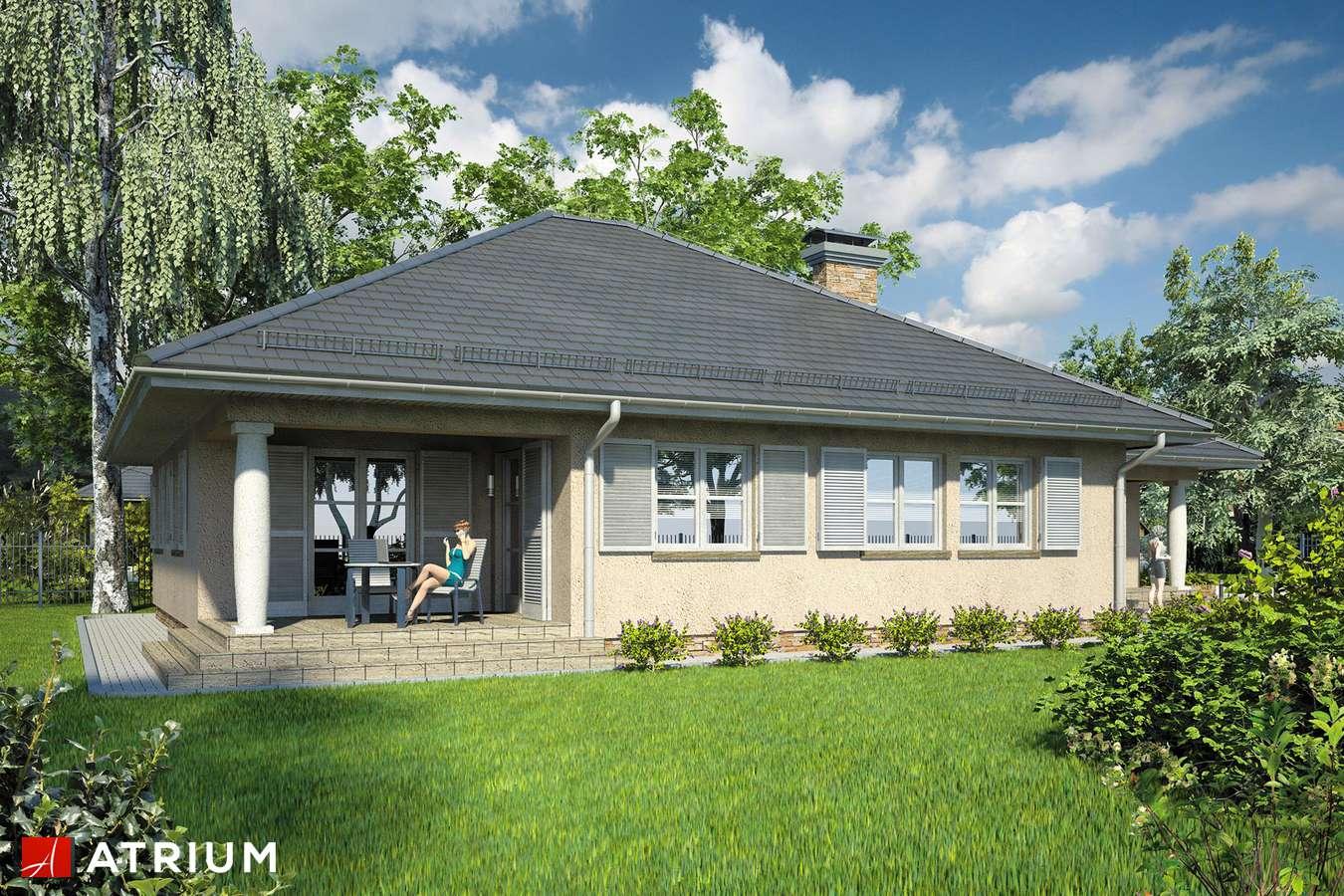 Projekty domów - Projekt domu parterowego MONTANA - wizualizacja 2