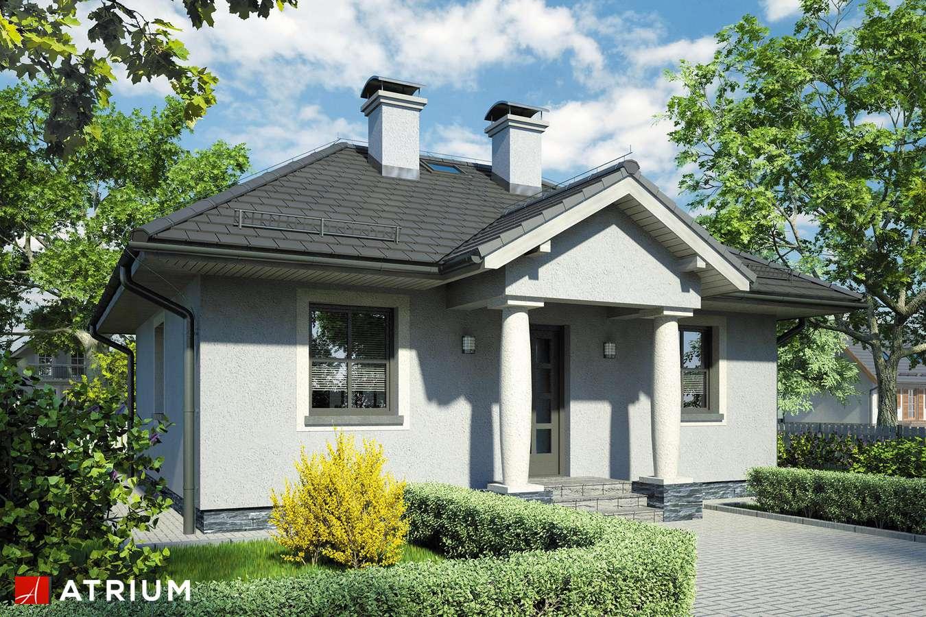 Projekty domów - Projekt domu parterowego HELLADA - wizualizacja 1