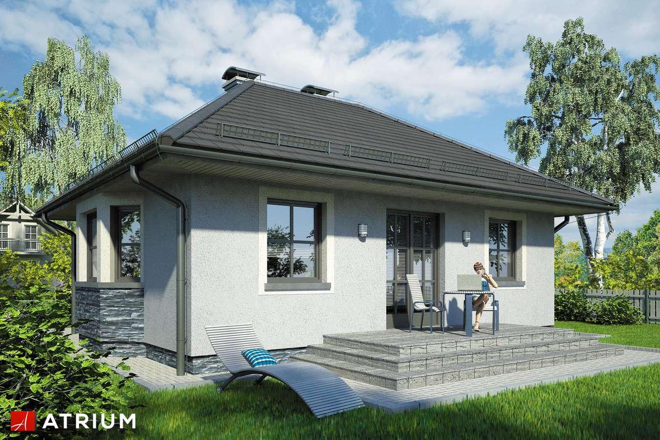 Projekty domów - Projekt domu parterowego HELLADA - wizualizacja 2