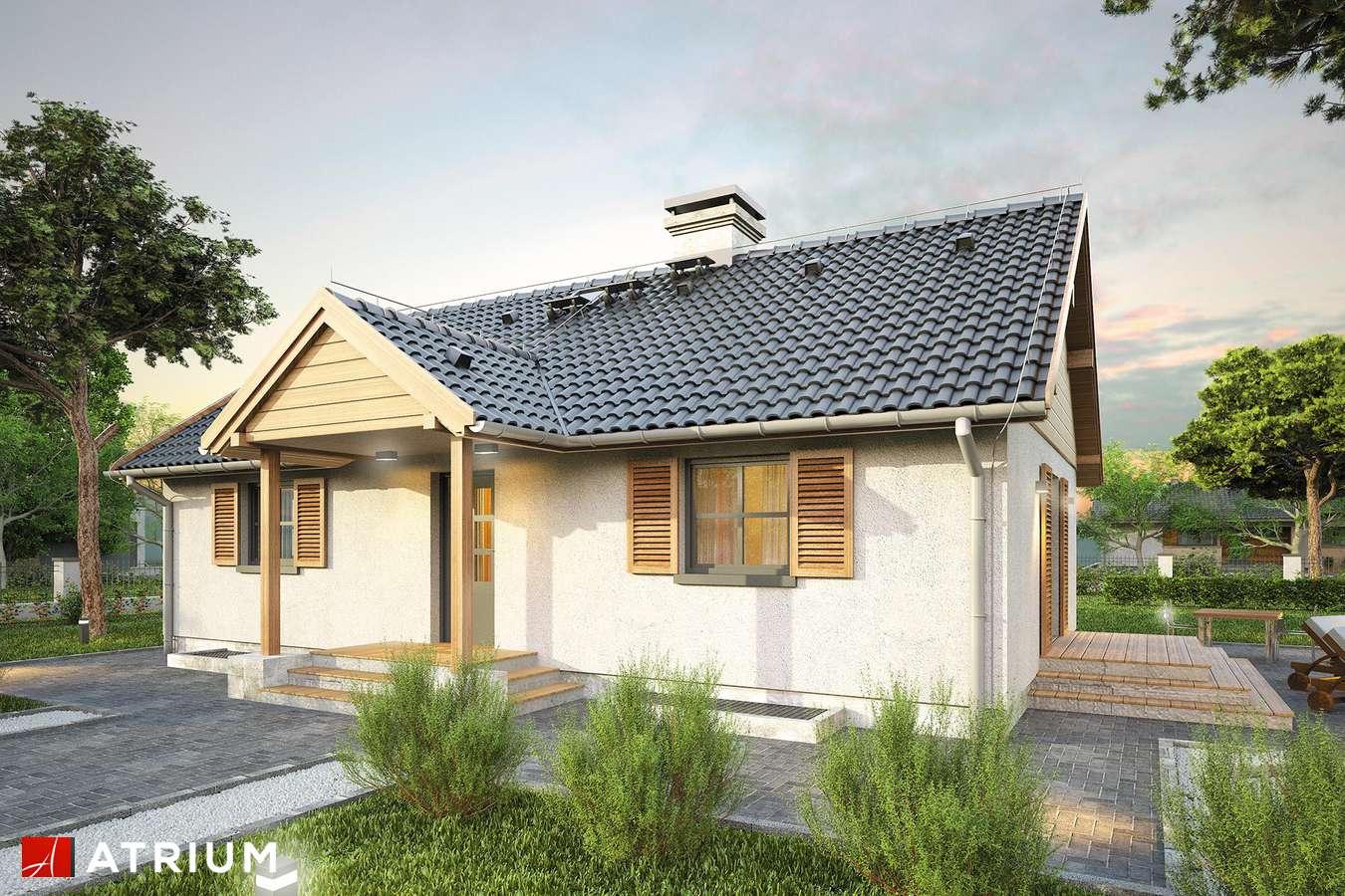 Projekty domów - Projekt domu parterowego WILGA II - wizualizacja 1