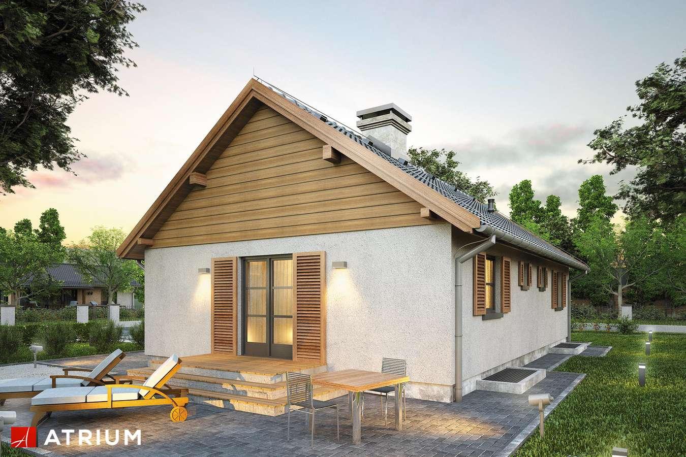 Projekty domów - Projekt domu parterowego WILGA II - wizualizacja 2