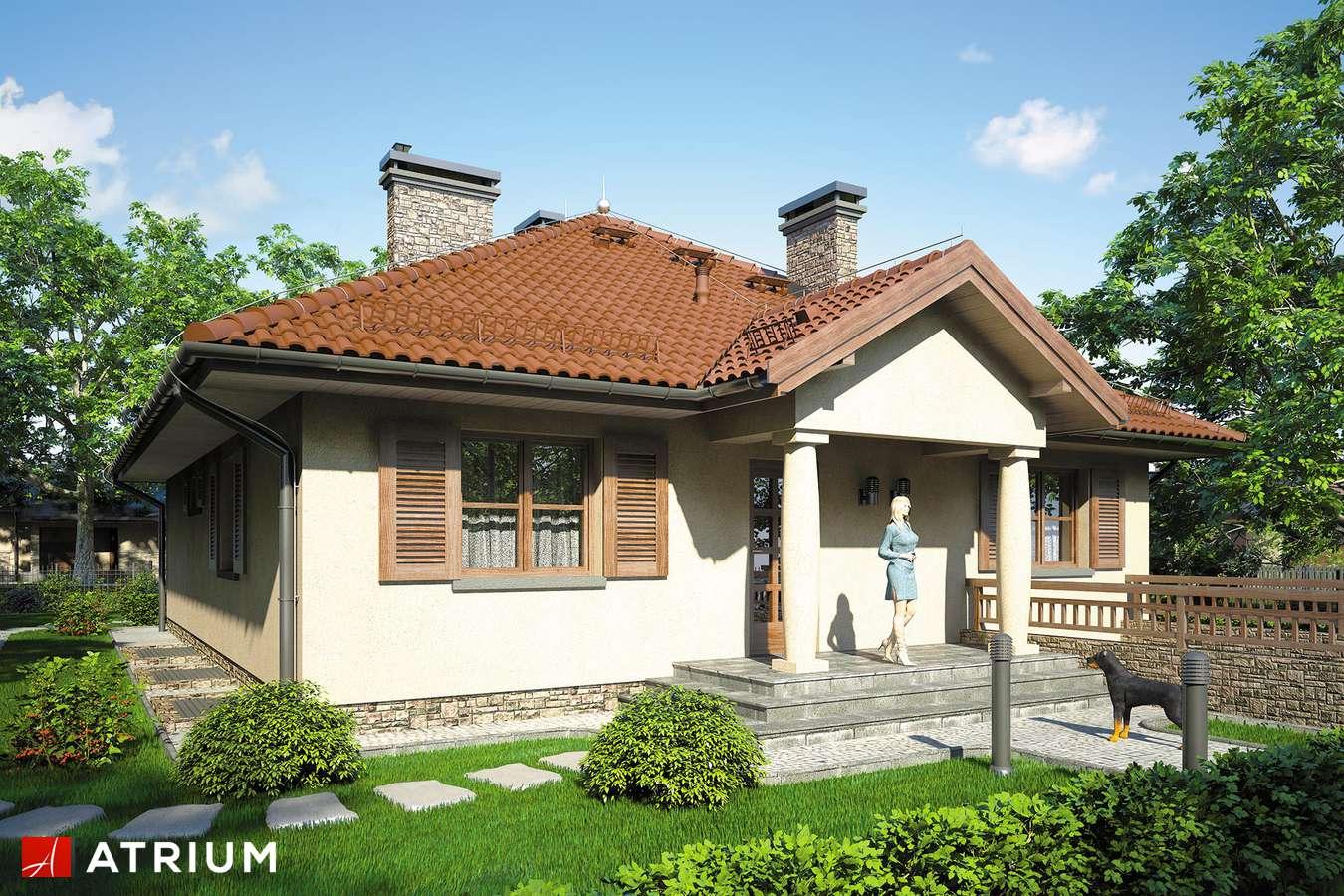 Projekty domów - Projekt domu parterowego KALIFORNIA II - wizualizacja 1 - wersja lustrzana