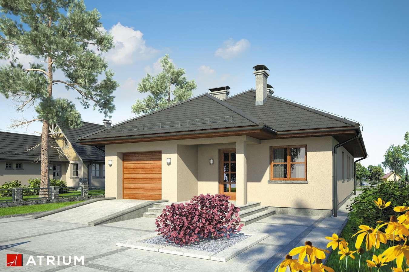 Projekty domów - Projekt domu parterowego SFINKS II - wizualizacja 1