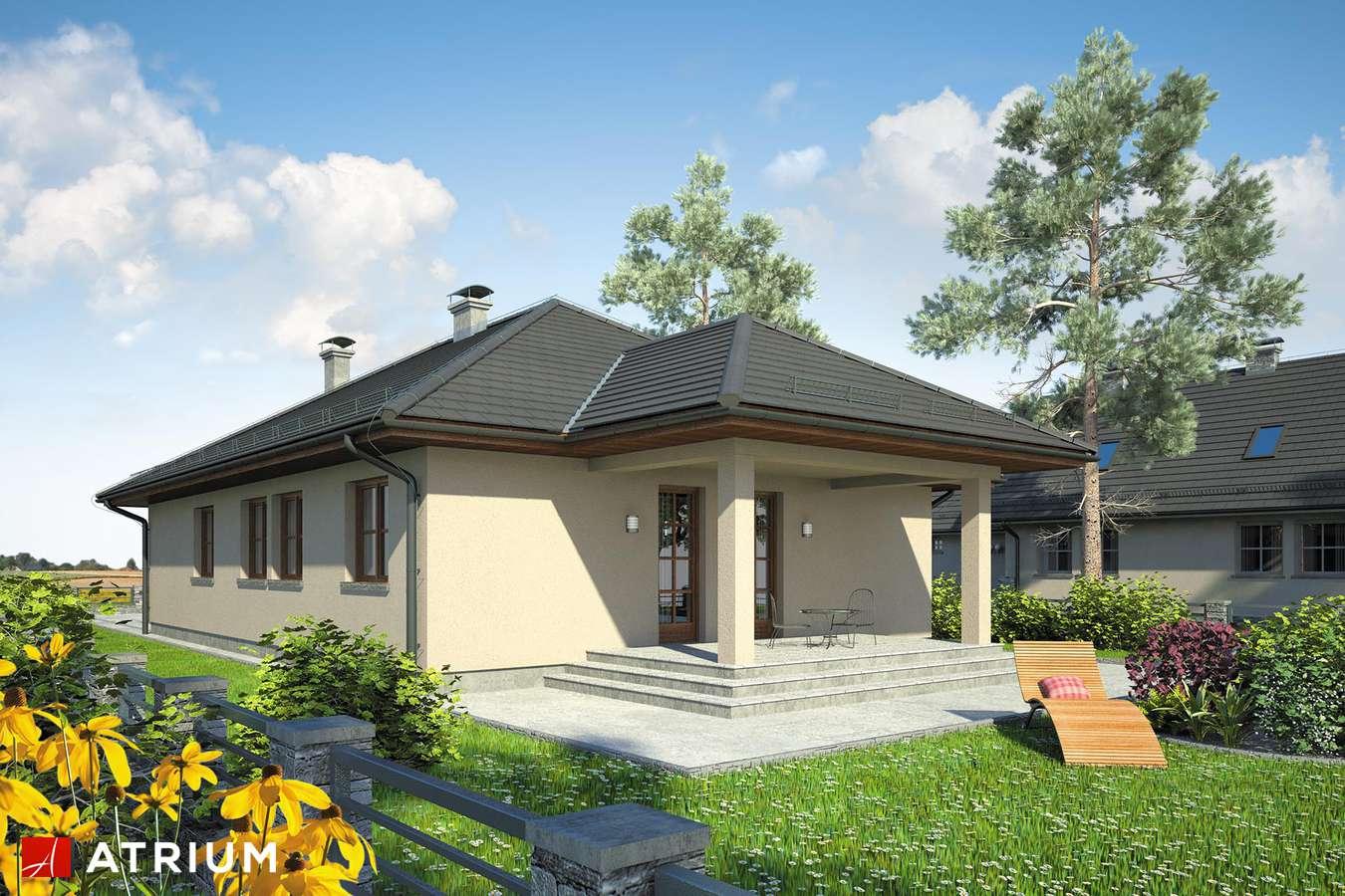 Projekty domów - Projekt domu parterowego SFINKS II - wizualizacja 2