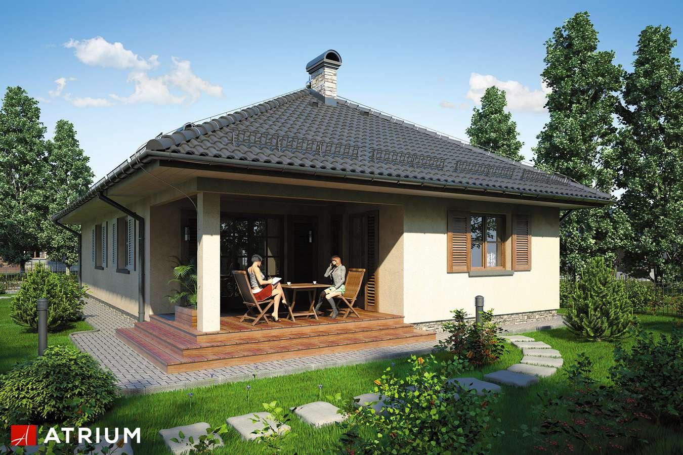 Projekt domu parterowego SFINKS - wizualizacja 2