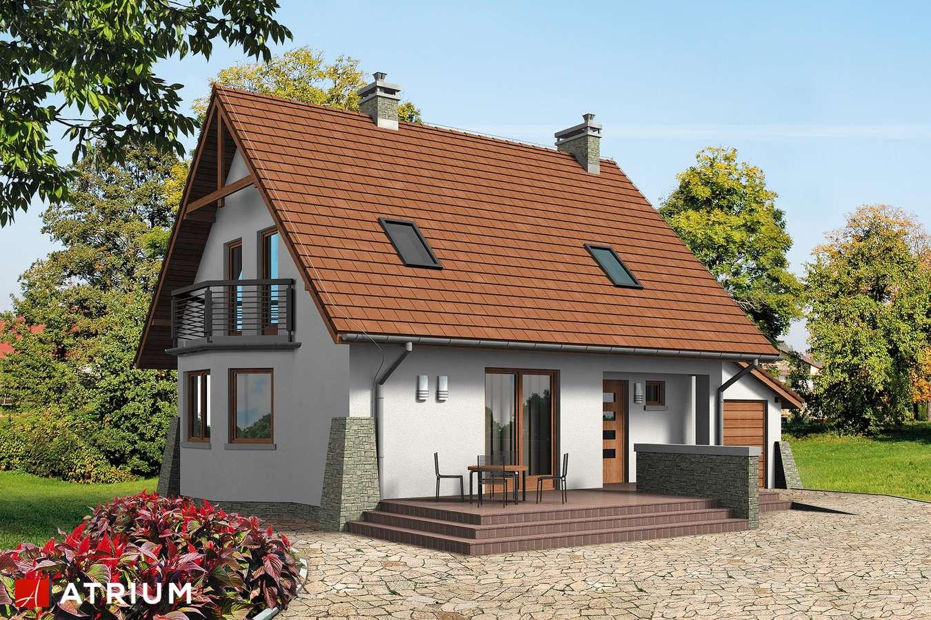 Projekty domów - Projekt domu z poddaszem DOBRY DUCH BIS - wizualizacja 1