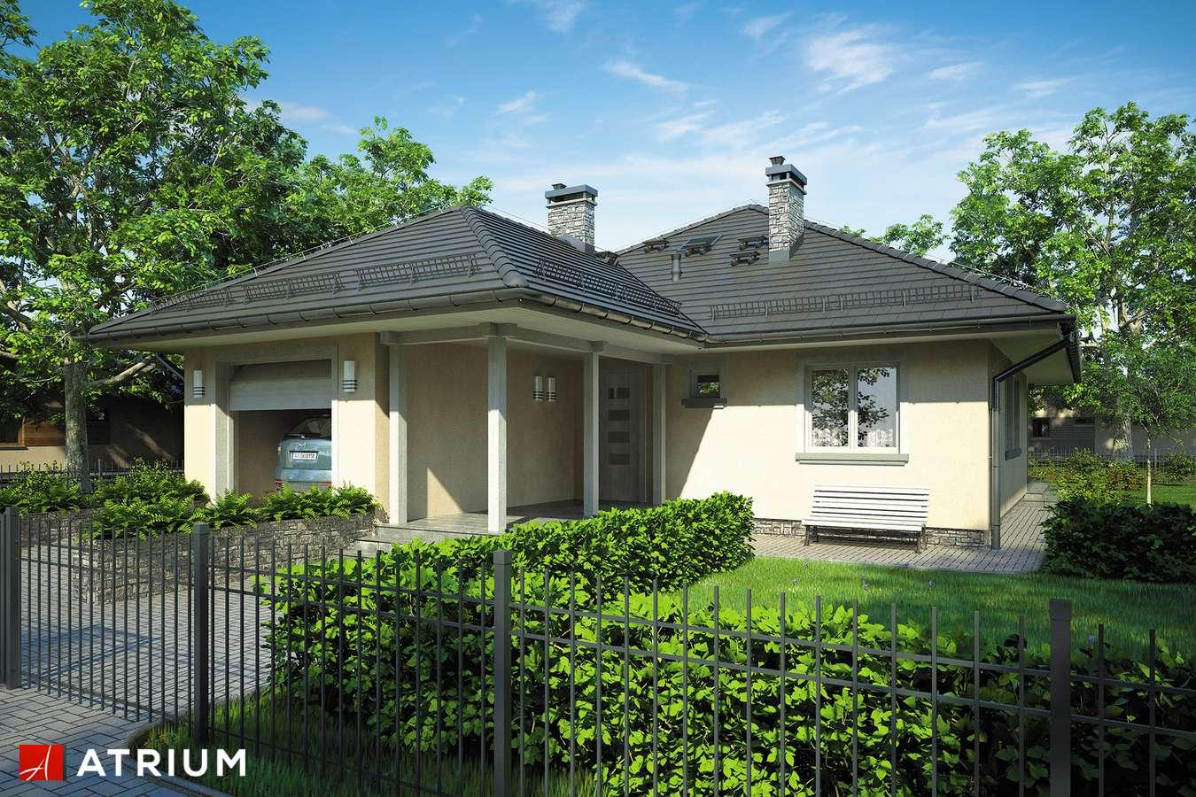 Projekty domów - Projekt domu parterowego TIP TOP BIS - wizualizacja 1