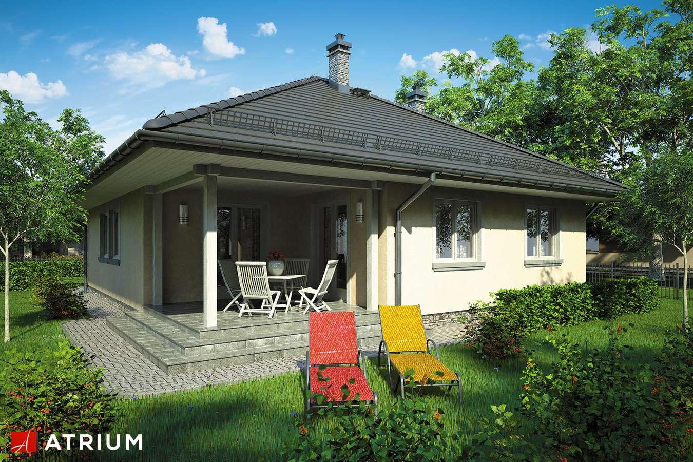 Projekty domów - Projekt domu parterowego TIP TOP BIS - wizualizacja 2