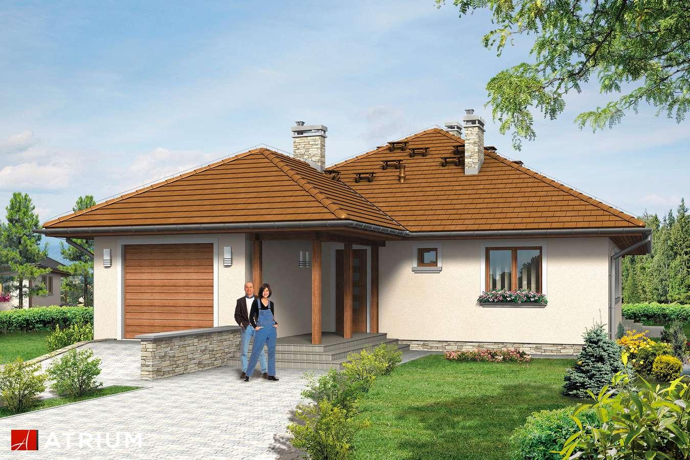 Projekty domów - Projekt domu z poddaszem FAKTOR PLUS BIS - wizualizacja 1