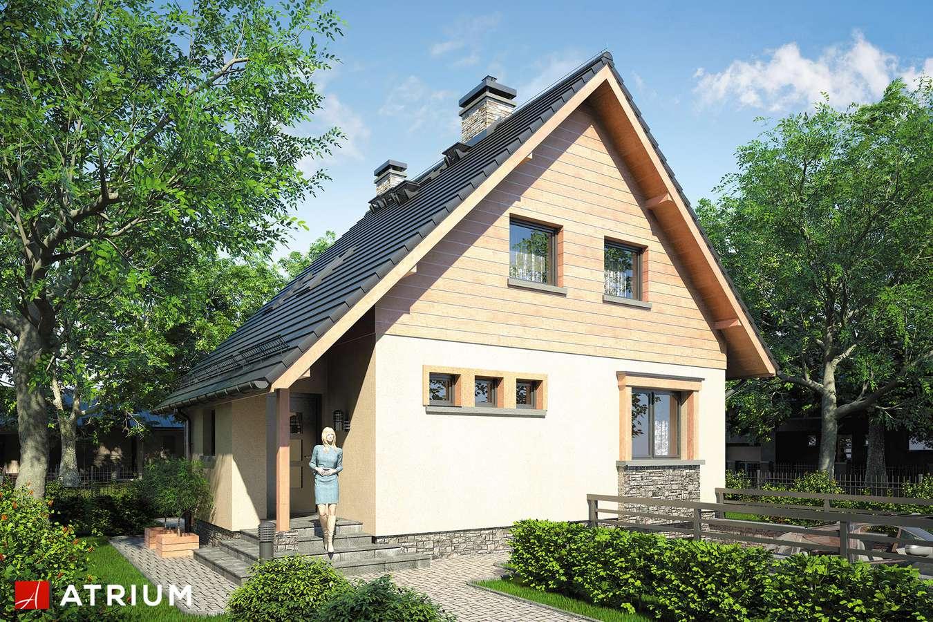 Projekty domów - Projekt domu z poddaszem ALF - wizualizacja 1