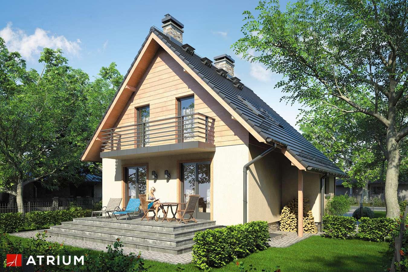 Projekty domów - Projekt domu z poddaszem ALF - wizualizacja 2